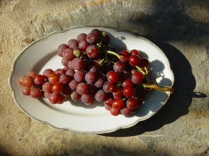800px-Grape_00005